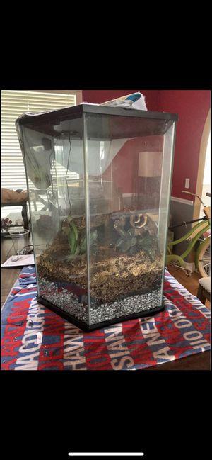 20 gal Hexagon terrarium for Sale in Zephyrhills, FL