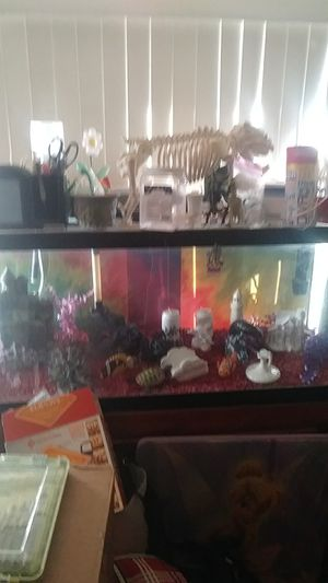 80 gallon fresh water Aquarium for Sale in Lakeland, FL