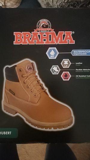 Brahme for Sale in Las Vegas, NV