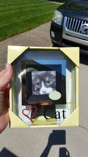 Cat picture frame, new for Sale in Taylor, MI