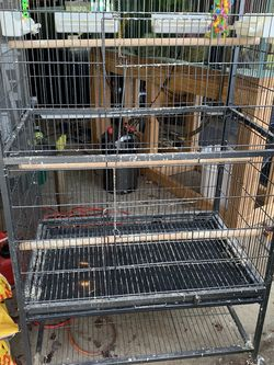 Large Bird Cage for Sale in Vancouver,  WA