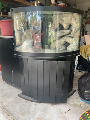 3 corner Glass, 40gallon, drilled Fish tank on wood stand for Sale in Tampa, FL