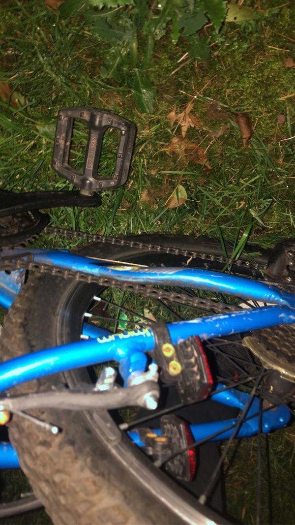 Thrasher bike