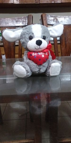 Valentine Teddy bear for Sale in Victoria, TX