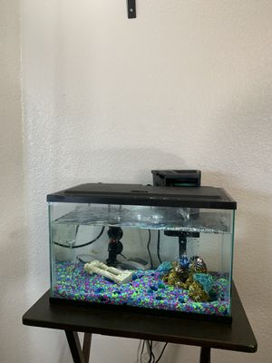 Fish aquarium 5gallons for Sale in Hercules, CA