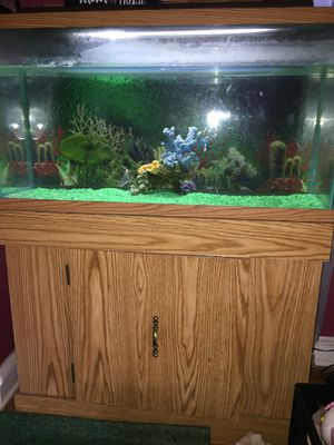 Aquarium w/stand and cabinet connected (holds 50 gals) for Sale in NEW CARROLLTN, MD