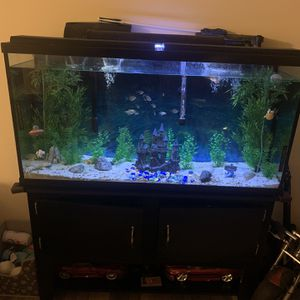 60 Gallon Fish Tank for Sale in Streetsboro, OH