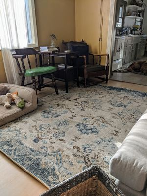 5x7 Area Rug for Sale in Portland, OR