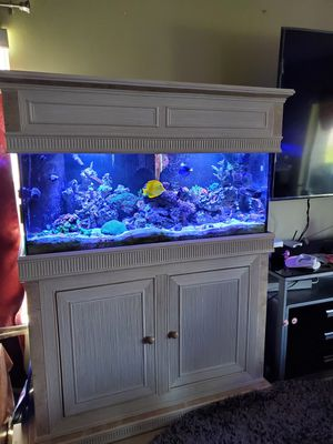 Saltwater coral reef aquarium for Sale in Kissimmee, FL