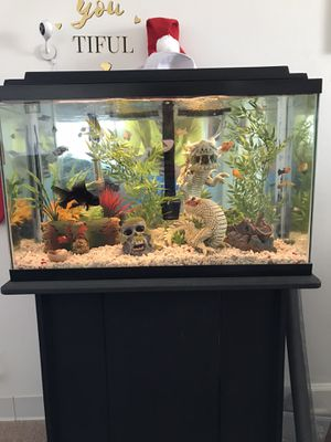 Fish Aquarium for Sale in Newport News, VA