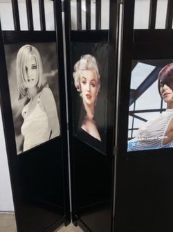 3-Panel Black Divider 6'T x 5'W for Sale in Cleveland,  OH