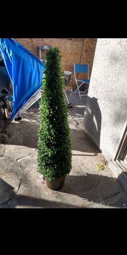 Boxwood pottery barn cone topiary (new) lit for Sale in Las Vegas,  NV