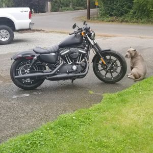 2019 Harley Davidson Iron 883 for Sale in Lakewood, WA