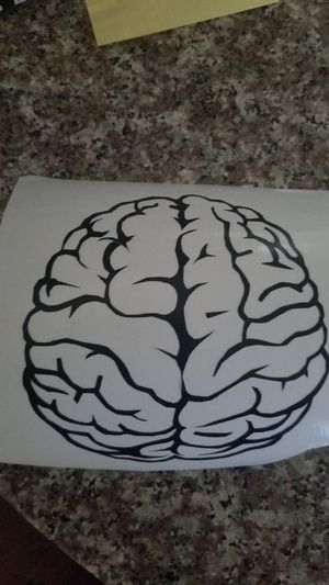 Brain decal for Sale in Knoxville, TN