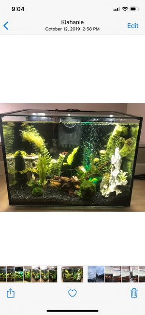 Aqueon Frameless LED Aquarium - 10gal for Sale in Sammamish, WA