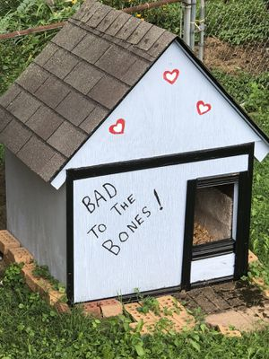 Doghouse for Sale in Westerville, OH