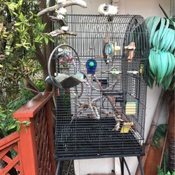 """Large Black Bird Cage. Black Metal On Rolling Casters. All The Stuff Inside Goes Also. 24"""" Wide And Stands 65"""" for Sale in San Jose,  CA"""
