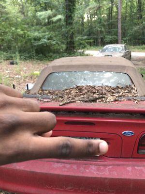 Mustang for Sale in Macon, GA