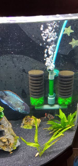 75 gallon fish tank for Sale in Bethpage, NY