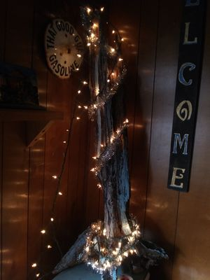 Rustic tree w roots for Sale in Poteau, OK