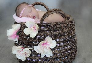 Photography prop basket for Sale in Miami, FL