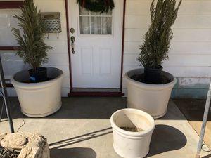 Flower pots for Sale in Lancaster, CA