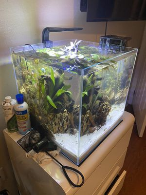 16 gallon aquarium with filter, heater and light. for Sale in BVL, FL