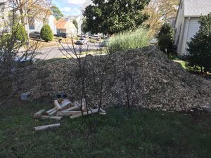 Free wood chip mulch for Sale in Virginia Beach, VA