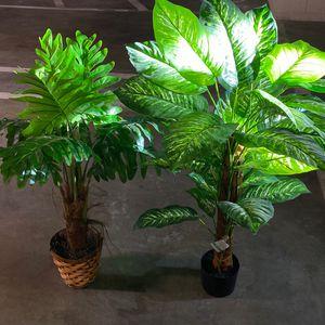 Fake plants for Sale in Newport Beach, CA