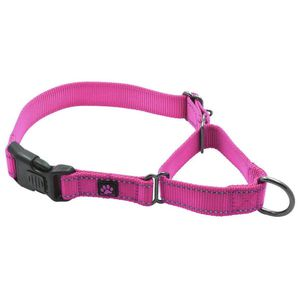 Nylon Martingale Dog Collar for Sale in Industry, CA
