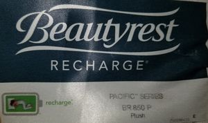 Simmons Beautyrest Recharge Mattress Queen BR 850 P Plush for Sale in Kirkland, WA