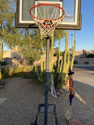 Lifetime Adjustable Basketball Hoop. for Sale in Scottsdale, AZ