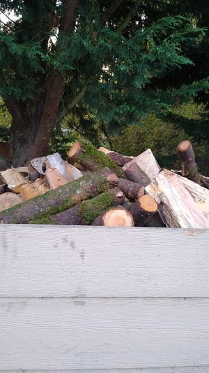 $100 special firewood Maple and fir dry for Sale in Camas, WA