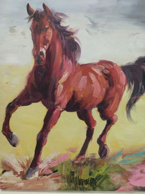 Horse runing for Sale in Plano, TX