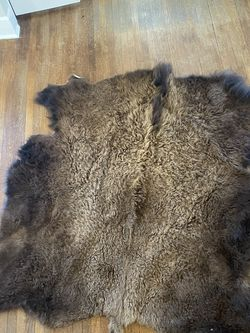 Genuine Buffalo Hide 8ft X 7ft for Sale in New Rochelle,  NY