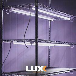 LUXX LED CLONE GROW LIGHTS (2PK) GAVITA FLUENCE GROWERS CHOICE KIND for Sale in Los Angeles,  CA