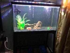 29 gallon fishtank for Sale in Portland, OR