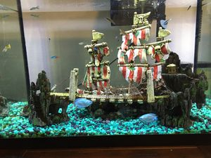 15 Gallon Fish Tank with Decor for Sale in Orlando, FL