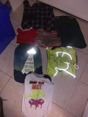 Dogs Clothes all for 5$ for Sale in Falls Church, VA