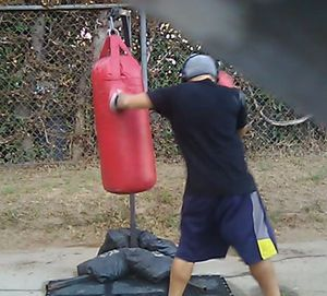 Punching bag & Stand for Sale in Los Angeles, CA