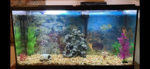 55 Gallon Aquarium Fish Tank with setup for Sale in Evansville, IN