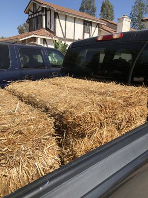 Straw Bales - FREE for Sale in Riverside, CA