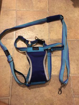 Large dog collar & leash set for Sale in Phoenix, AZ