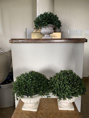 3 small plants! Home decor for Sale in Miami, FL