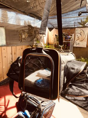 The Expandable pet carrier for Sale in Garden Grove, CA