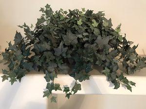 Artificial plants for Sale in Menifee, CA