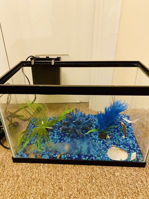 Medium size fish tank for Sale in Groton, MA