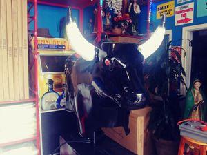 Toro Grande para Contratar para tu fiesta for Sale in Ontario, CA