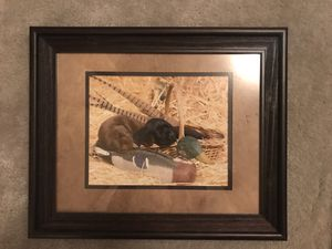 Hunting puppy framed picture for Sale in Arcola, TX