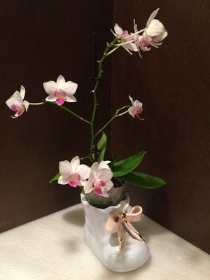 Adorable Vintage Ceramic Nursery Baby Shoe with Pink Bow and Blooming Orchid for Sale in San Pedro, CA